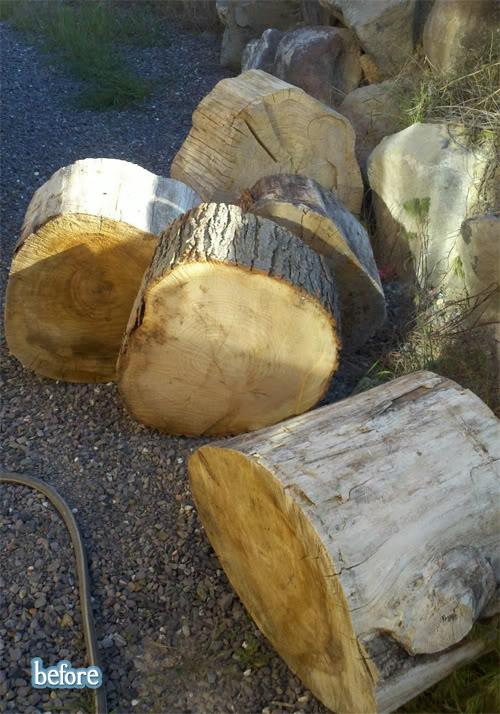 Stump the Yard