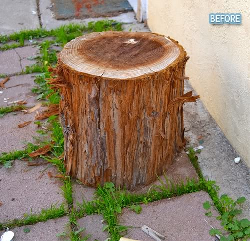 Do the Stumpty Stump!