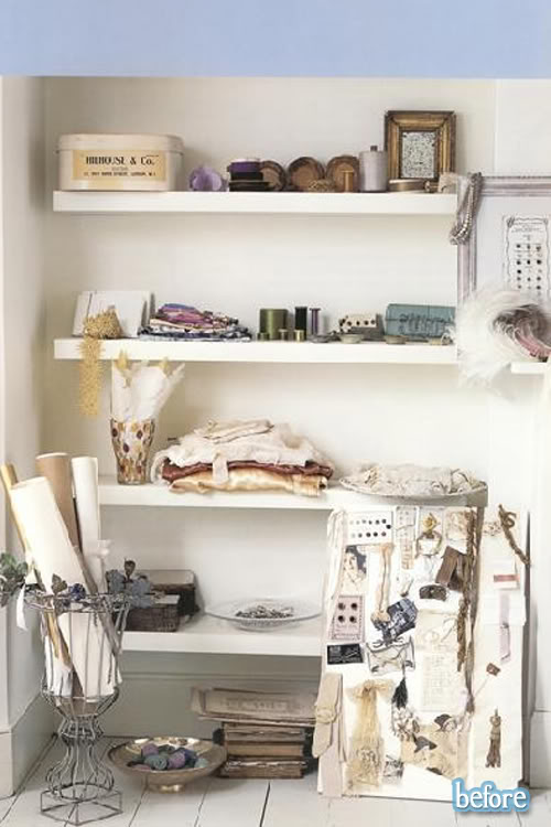 Skull on a Shelf