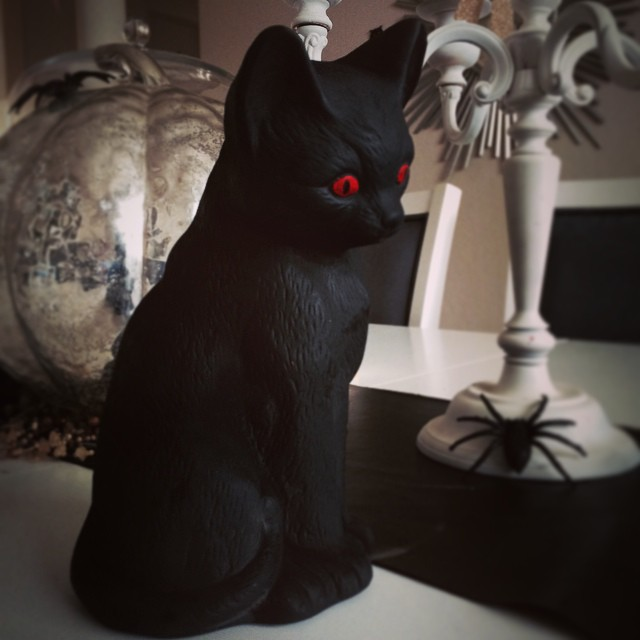 ... a Scaredy Cat! ? Me-yow. #halloween #decor #betterafter
