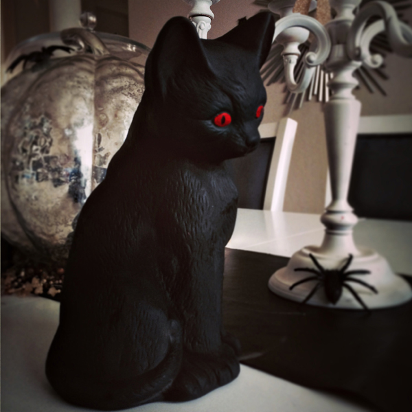 black hallloween cat