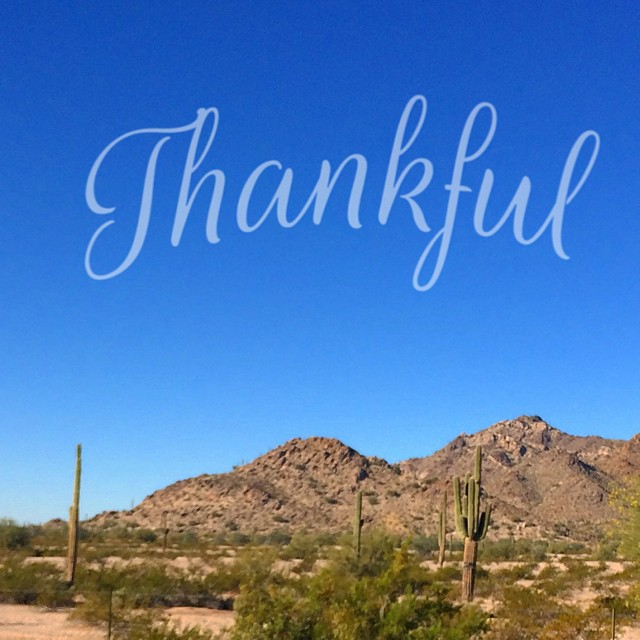 Thankful for blue skies and pumpkin pies. ☀️??? Happy thanksgiving from AZ!