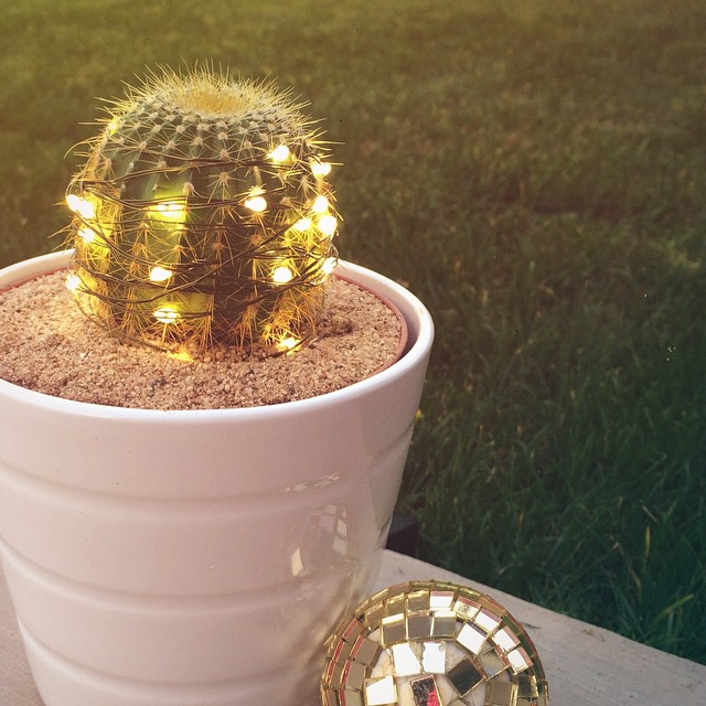 My merry little cactus and I are representing #Arizona with #MarthaLightsUpAmerica! ?