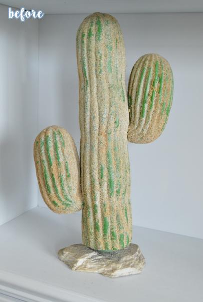 before cactus