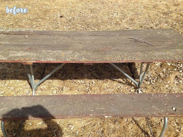 Yahtzee Game Table Before