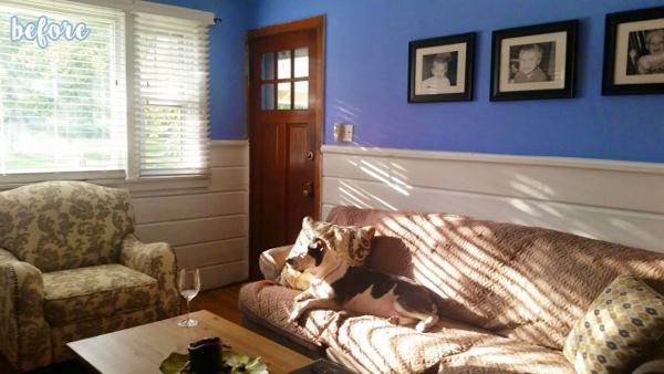 White/Light Blue Living Room Before 2