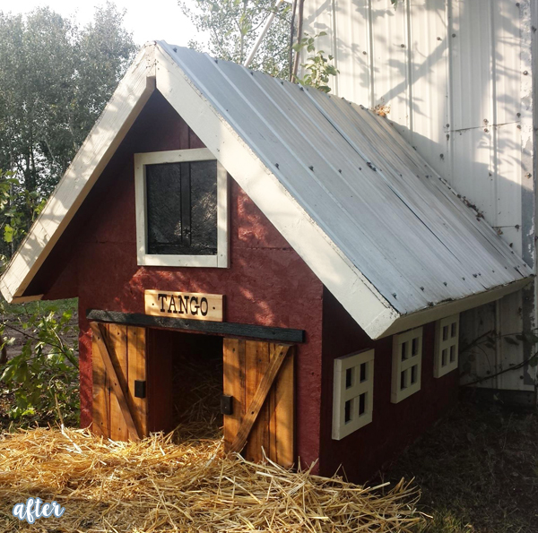 In the dog house house plan 2017 for Charleston dog house