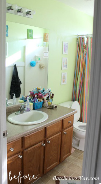 bathroom makeover before